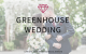 Detroit | Ann arbor | Lansing | Michigan | Wedding Planner